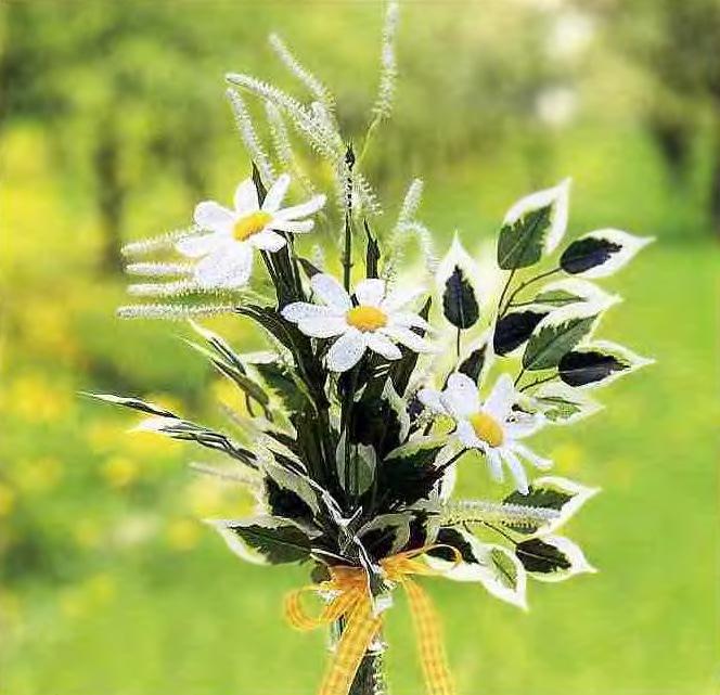 Размер цветков: 8 см