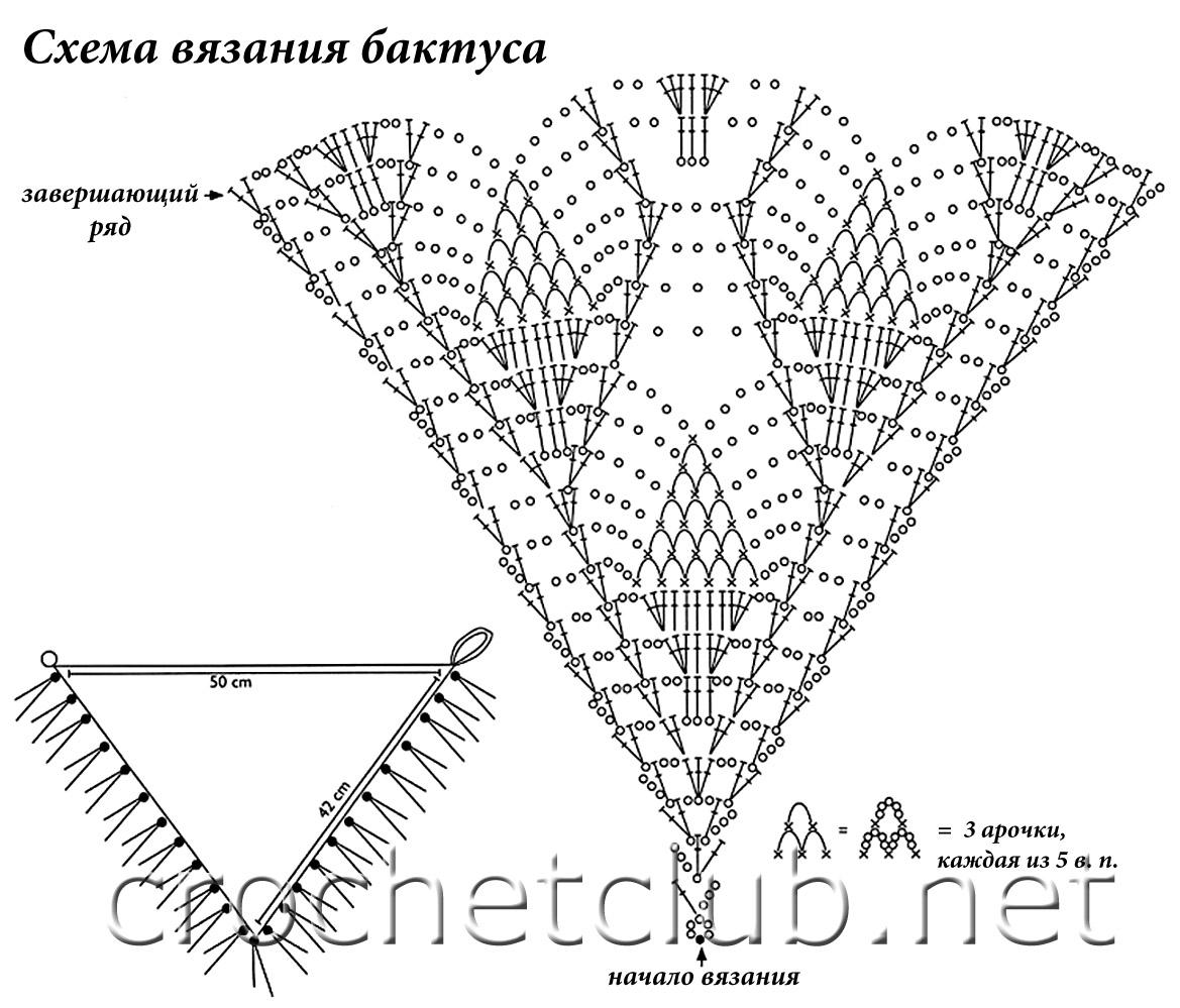 На нашем сайте большой выбор схем вязание спицами моделей беретов.  Мк по вязанию бактуса спицами читаейте ниже.
