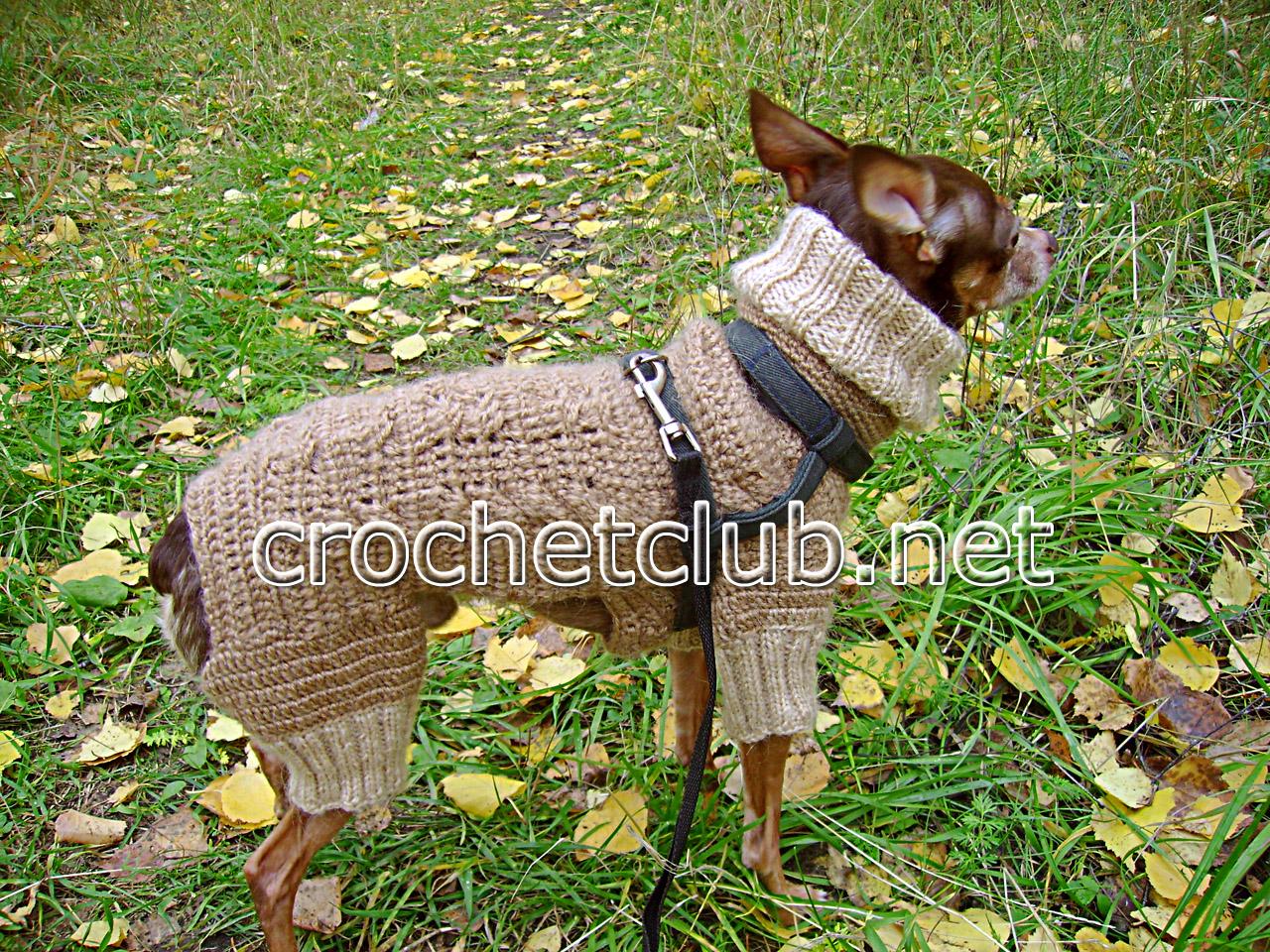 вязаные одежда для собак схемы