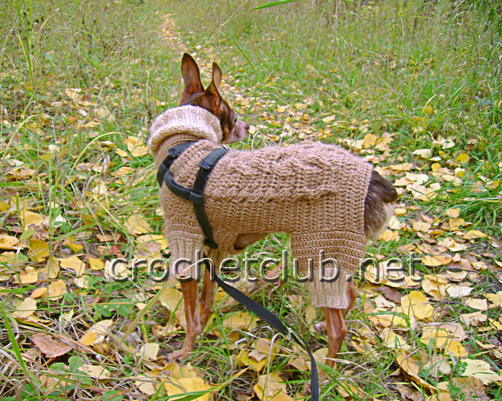 Вязаная одежда для собачек
