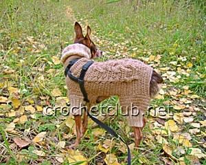 вязаный костюм для собачки 2