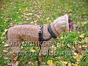 вязаный костюм для собачки мк 5