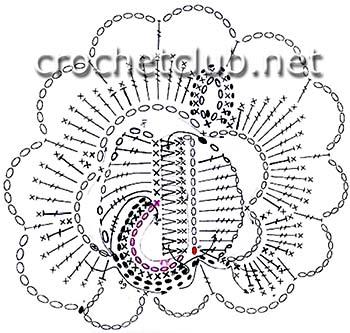 схема плоской розы