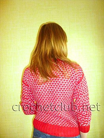 пуловер связанный двухцветным узором 1