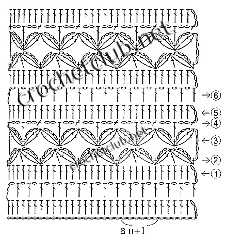 Седум рубенса лизард выращивание 74